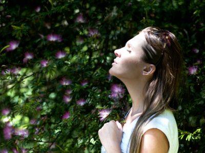 calidad del aire interior valore